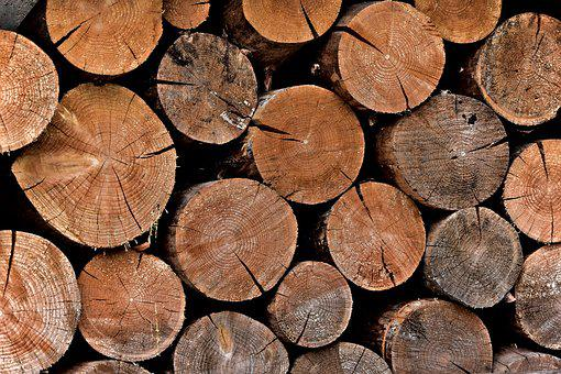 Wood, Tree, Pile, Brown, Nature, Wooden, Texture, Old