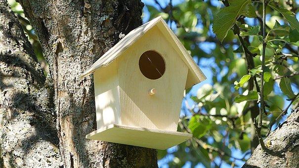 Aviary, Bird's Nest, Nesting Place, Bird Feeder