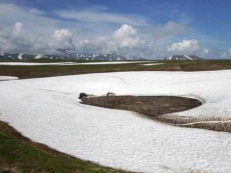 Kamchatka, Sneznik, Gully, Creek, Summer