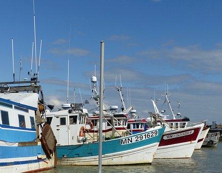 Port, Fishing, Fishing Port, Sea, Boat