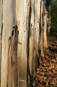Wood, Fence, Texture, Timber, Plank, Wooden, Wall