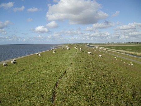 North Sea, Sea, Nature, Holland, Netherlands, Beach