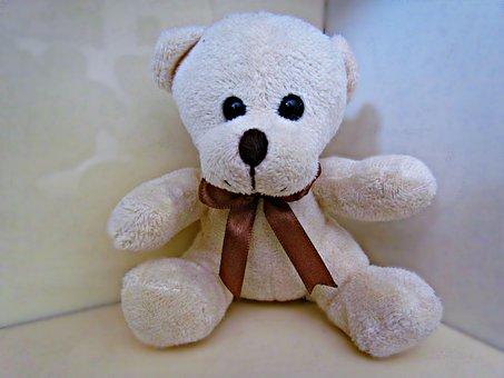 Plush, Teddy Bear, Toy, The Mascot, Misiek