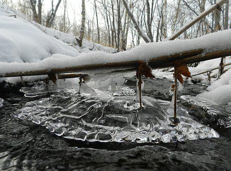 Winter, Winter Forest, Creek, Frost, Snow, Snowdrifts