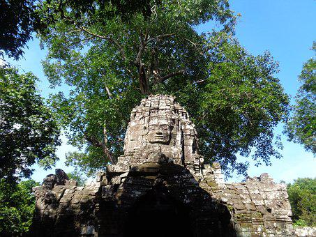 Cambodia, Ruins, Trees, Temples, Nature, Old
