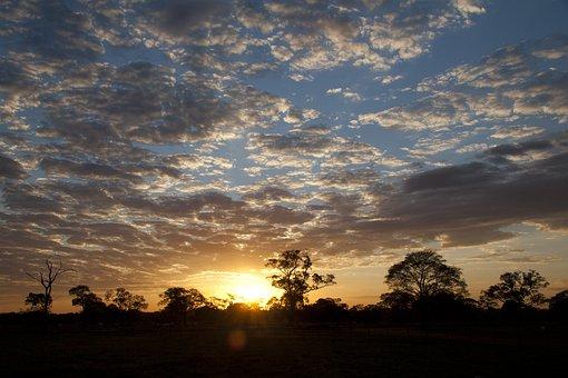 Pantanal, Viagem, Font Font Natureza Font Font