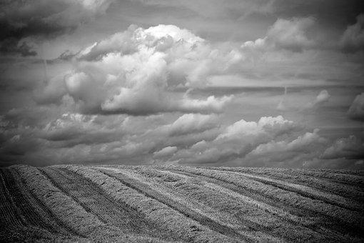 Landscape, Field, Summer, Fields, Nature, Agriculture