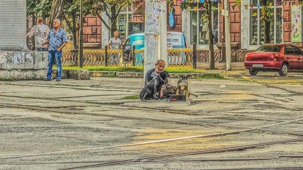 Tramp, The Beggar, Dogs, Rails