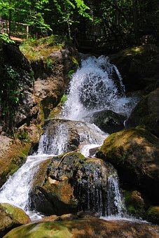 Waterfall, Myra Cases, Lower Austria, Nature, Forest
