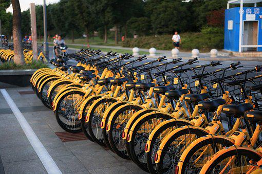 The Little Yellow Car, Shared Bike, Bike