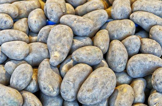Potato, Earth Apple, Grumbeer, Tuber, Vegetables