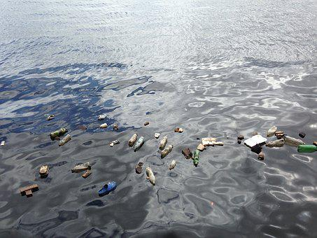 Water, Polluted, Plastic, Garbage, Bottle, Environment