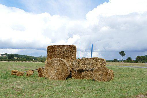 Tractor, Hay, Hay Bale, Agricultural Vehicle