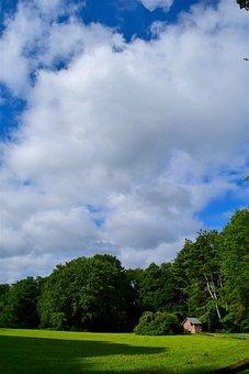 Field, Sky, Sunlight, House, Green, Summer, Nature