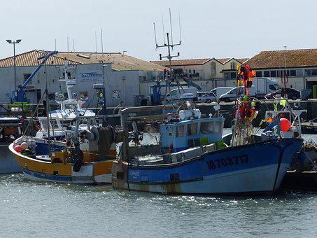 Trawler, Boats, Fishing, Fishing Boats, Sea, Port