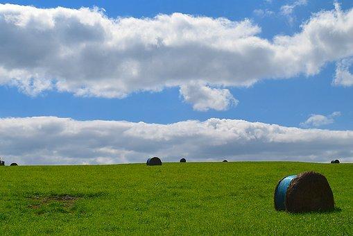 Field, Green, Sky, Clouds, Blue, Hay, Landscape, Summer