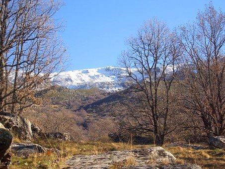 Landscape, Snow, Nature, Winter, Mountain