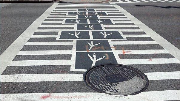 Bird Feet, Crossing, Walk, Crosswalk, Hopscotch, Street