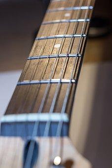 Guitar, Electric Guitar, Vulture, Strings, Music