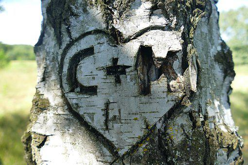 Birch, Tree, Bark, Heart, Initials, Love, Promise, Old