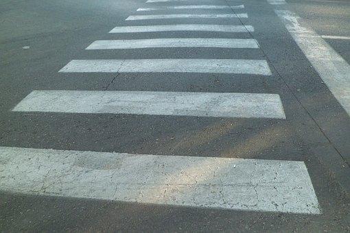 Traffic Signal, Zebra, Transit, Crosswalk