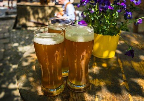 Beer, Wheat, Yeast, Foam, Wheat Beer, Trueb, Thirst