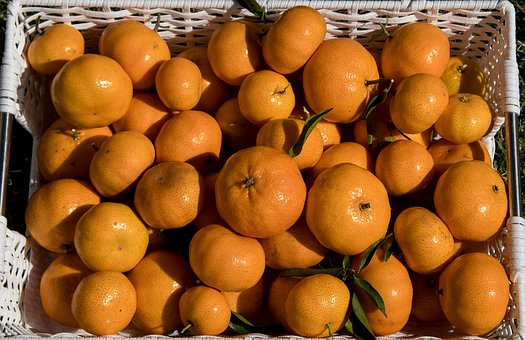 Mandarins, Citrus, Fruit, Harvest, Orange, Healthy