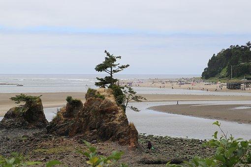 Oregon, Oregon Coast, Beach, Coast, Ocean, Pacific