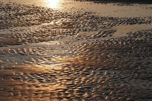 Watts, Priel, Sea, Ebb, Beach, Coast, Wadden Sea, Water