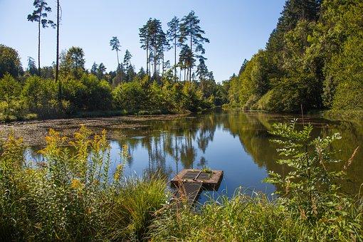 Monastery Pond, Salem, Pond, Water, Nature, Summer