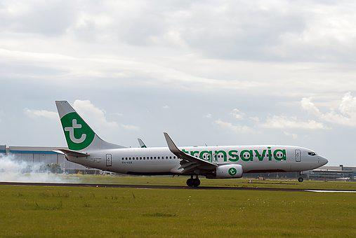 Plane, Runway, Airline, Transavia, Countries, Airport