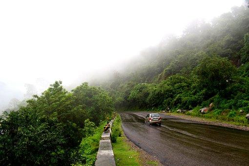 Rains, Fog, Clouds, Landscape, Forest, Nature, Weather