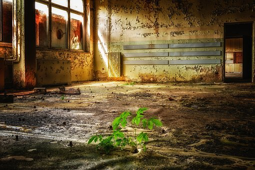 Building, Room, Lost Places, Decay, Break Up, Past