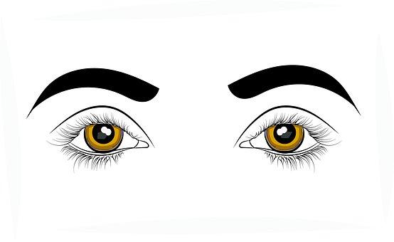 Eyes, Sight, Vision, Health, Optical, Medicine, Care