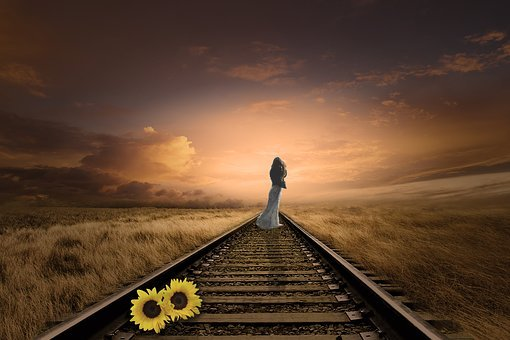 Woman, Sunflower, Stored Sunflower, Seemed, Go Forward