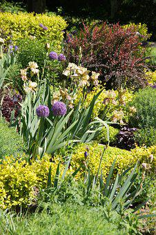Weihenstephan, Sighting Garden, Plant, Perennials
