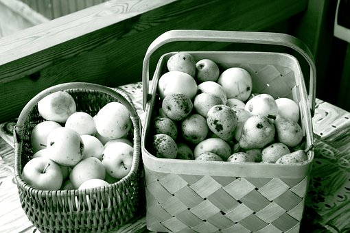 Apples, Autumn, Black And White, Basket