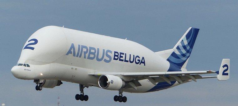 Beluga, Airbus, Aircraft, Cargo, Cargo Plane, Flight