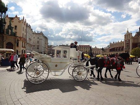 Krakow, Sky, Poland, Horses, The Horses Are, Square