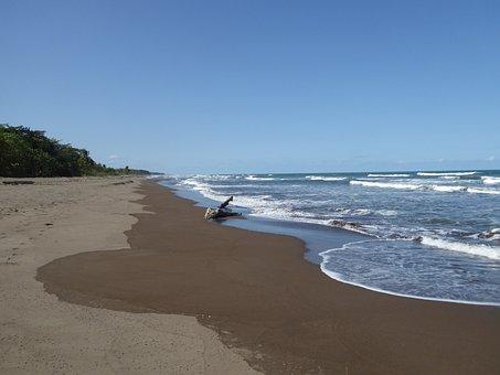 Central America, Costa Rica, National Park, Beach