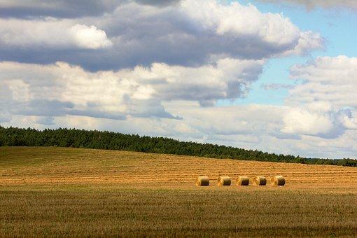 Field, Stack, Landscape, Nature, Straw, Hay, Summer