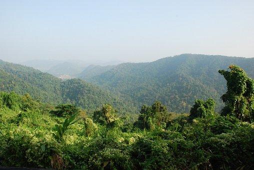 Thailand, Rainforest, Tropics, National Park