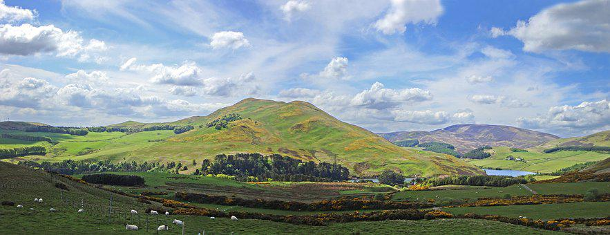Countryside, Scotland, Sheep, Upland, Pentlands