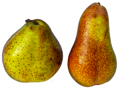 Pears, Fruit, Pome Fruit, Round, Length, Fruit Growing