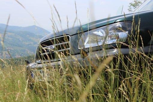 Subaru, Forester, Forest, Wild, Serbia, Ivanjica