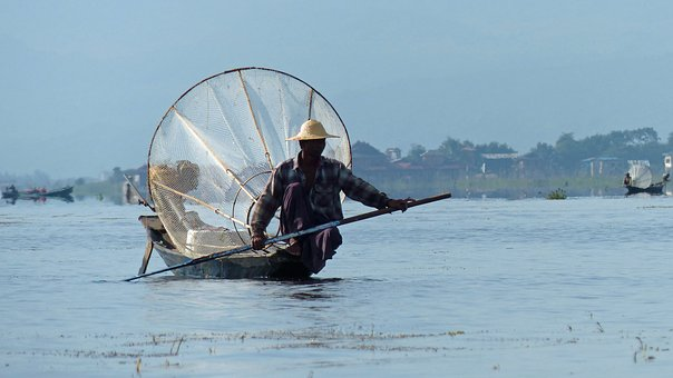 Burma, Lake, Lake Inle, Sinner, Fish, Myanmar, Boat