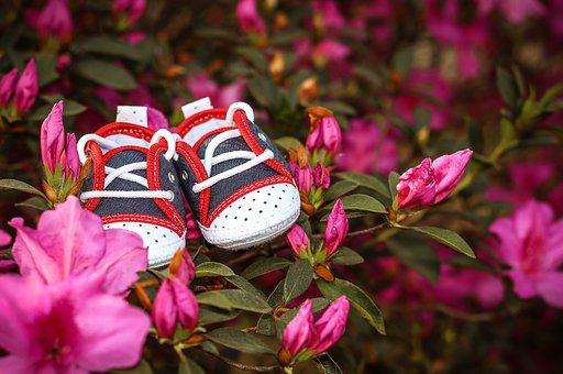 Pregnant Woman, Slipper, Spring, Boy, Maternity Test