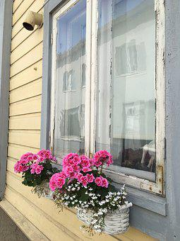 Window, Flowers, Home, White, House, Decoration, Room