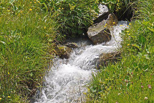 Mountain Source, Meadow, Alm, Stones, Rock, Torrent