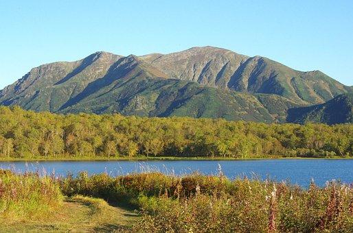 Lake, Mountains, Forest, Greens, Birch, Autumn, Tundra